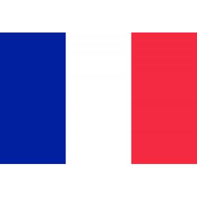 Bandera país 90 x 150 cm