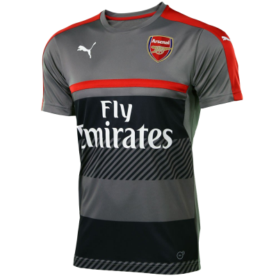 Training Arsenal gris Puma