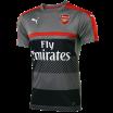 Training Arsenal grey Puma