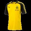 Maillot entrainement Borussia Dortmund Puma