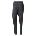 Training pant Bayern Munich ADIDAS grey