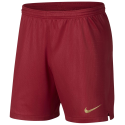 Short Portugal domicile 2018 NIKE