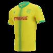 Shirt PSG home 2016-17 Nike